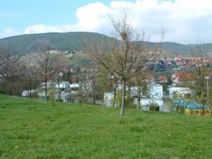 Dscfpfalz3